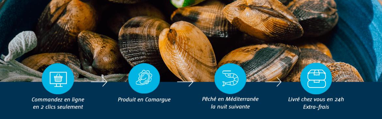 Côté Fish - Coquillages & Crustacés | Poissonnerie en Ligne